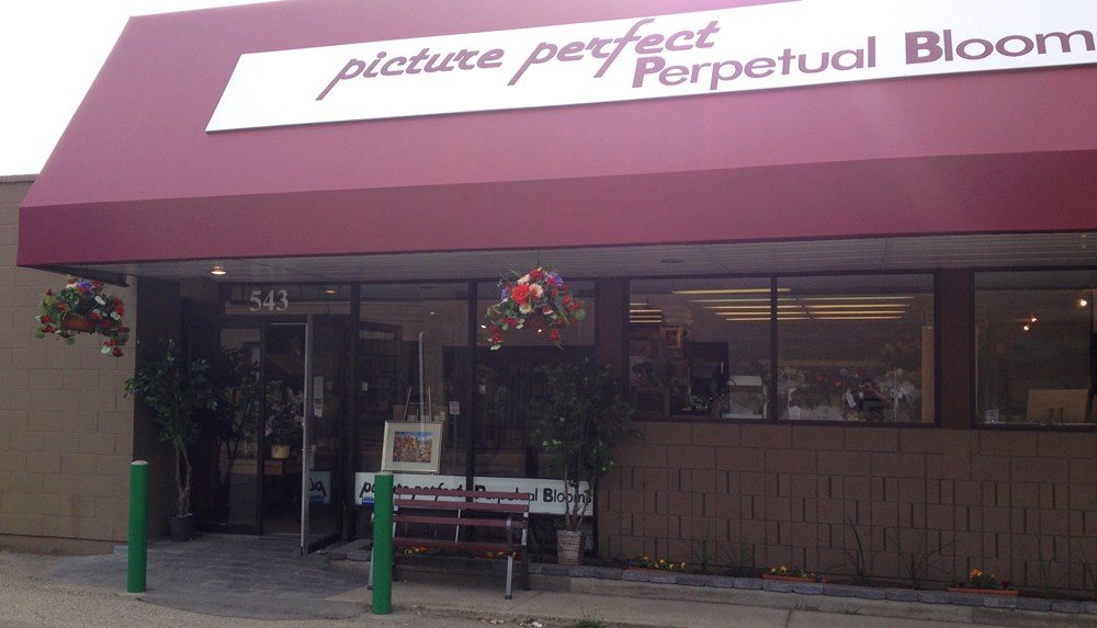 Picture Perfect in Kelowna located at 543 Lawrence Avenue